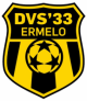 Logo DVS'33 Ermelo 14